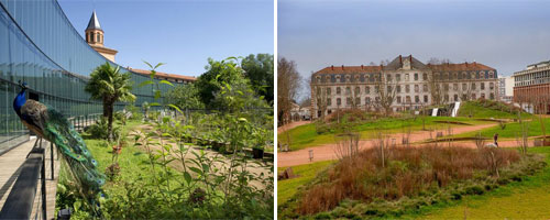 Bons plans franceminute for Jardin niel toulouse